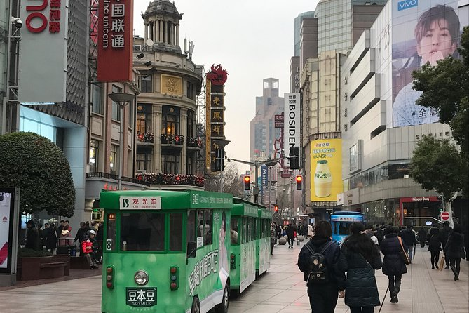 A private day tour by metro with Shanghai Tower, Shanghai Zoo and Nanjing Road photo 2