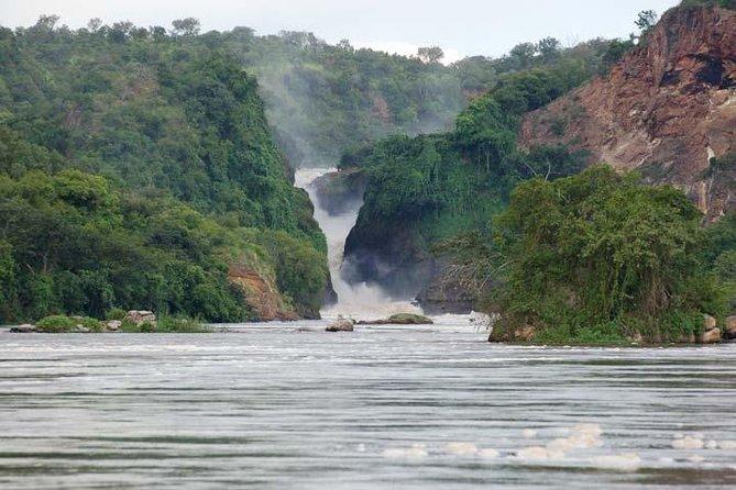 3 days Murchison falls Safari ( minimum 2 persons )