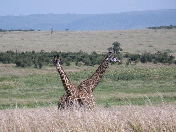 Low Season Tanzania Safari 7 days April and May 2021