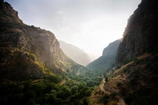 Small Group Tour with lunch - Qadisha Valley, Bcharre & Cedars of God