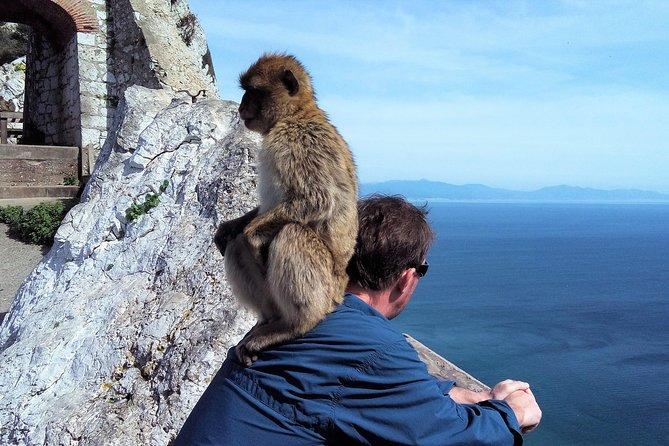 Viagem privada de dia inteiro a Gibraltar saindo de Marbella ou Málaga