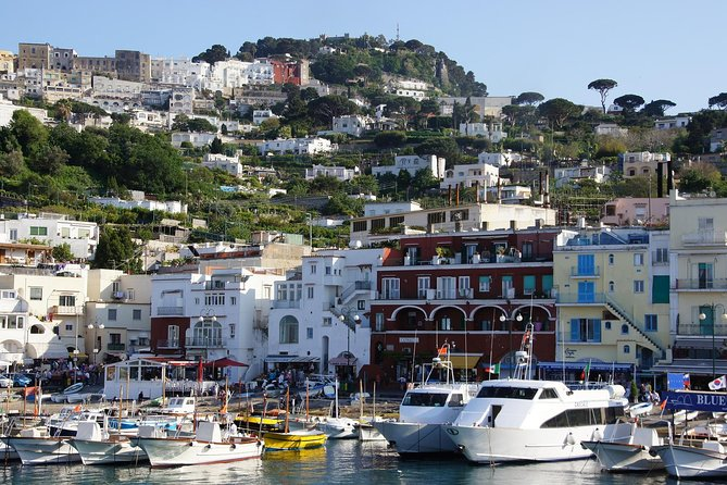 Capri Private Walking Tour with Professional Guide