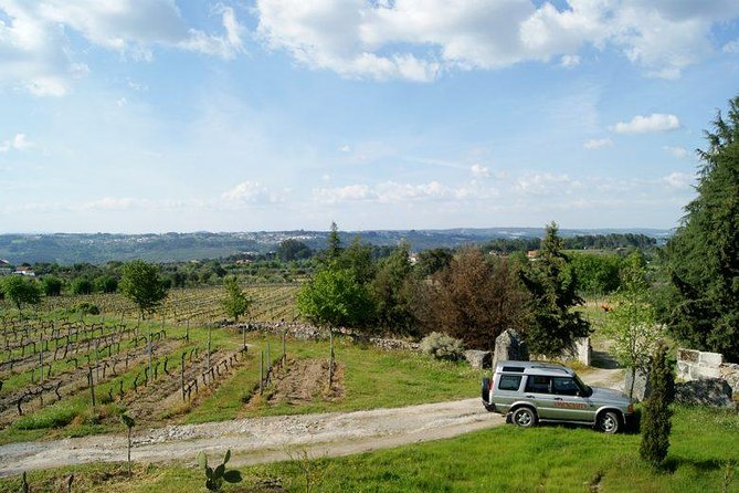 WINE TOUR (1/2 day) - wine taste and 1/2 day off road experience in Dão region photo 1