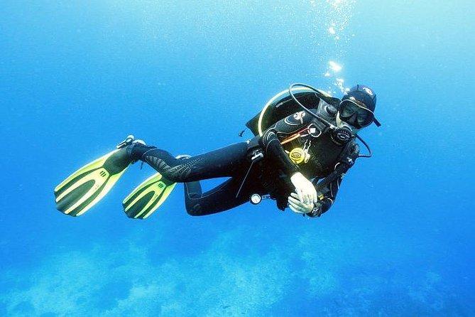 Diving Full day 2 Stop dive Boat Trip (Beginners) – Hurghada