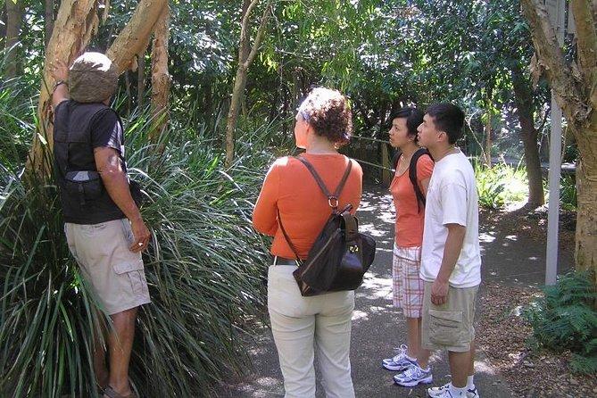 Boomerang Aboriginal Cultural Tours