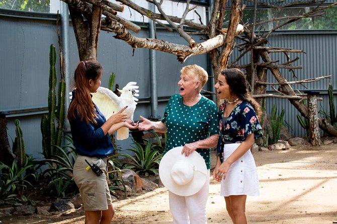 Maleny Botanic Gardens Bird Aviary Experience Ticket