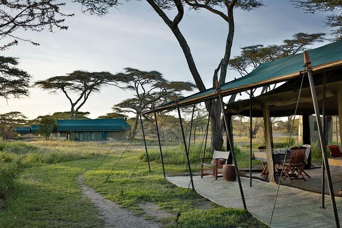 4 days 3 nights Budget Camping Safari