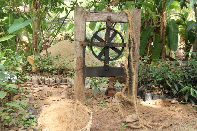 Nileshwar's Nature Trove - A Tyndis Village Experience