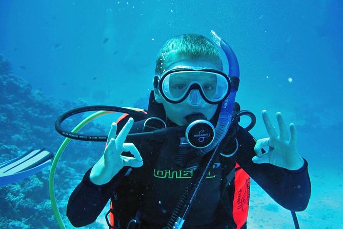 Scuba Diving Boat Trip - Hurghada photo 17