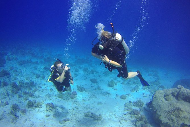 Scuba Diving Boat Trip - Hurghada photo 9