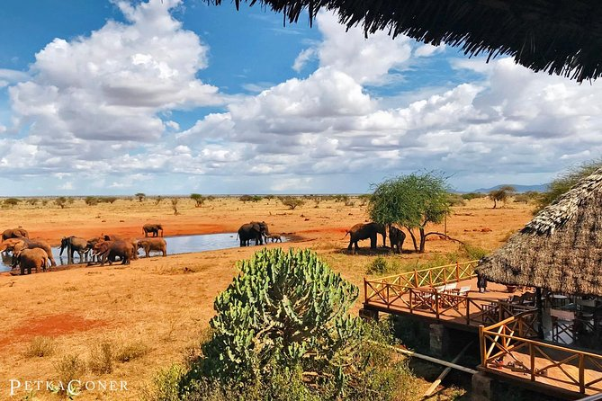 3 Day Tsavo East & Ngutuni