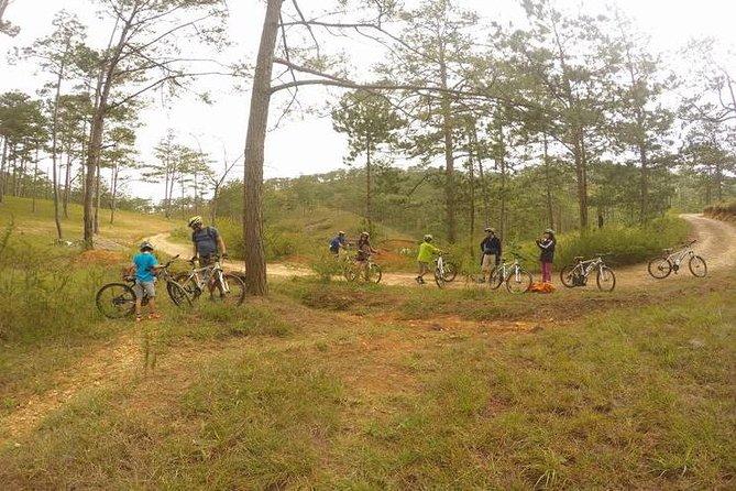 Dalat Mountain Biking Tours