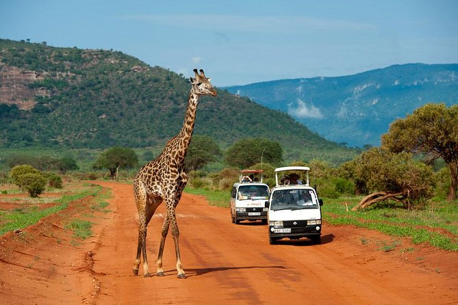 3 Days Tsavo East & Tsavo West Safari ( Minimum 2 Pax)