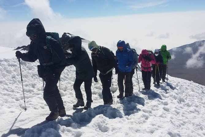 Kilimanjaro trek via Lemosho route 8 days/7nights