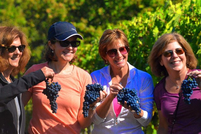 Half day Chianti Wine Tasting Tour Experience in Tuscany - Ultimate Tasting