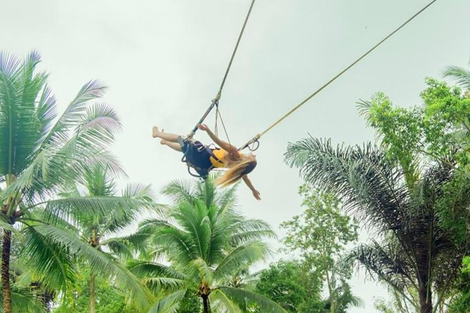 Ubud Swings & Nature Tours
