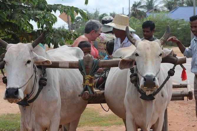 Ox-cart Culture Tour, Countryside Experince in Siem Reap
