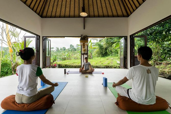 Full Day of Holistic Wellness in Bali