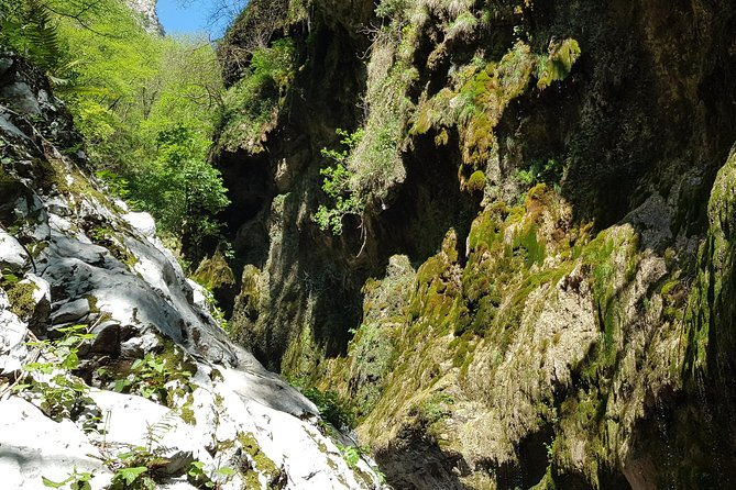 Ferriere waterfalls - Amalfi Coast photo 4