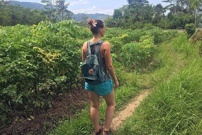 Full Day of Holistic Wellness in Bali
