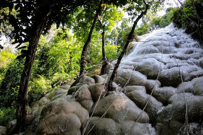 Sticky Waterfall Cycling Tour