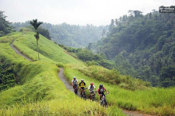 Ubud: Electric Bike Tour to Tegallalang Rice Terraces