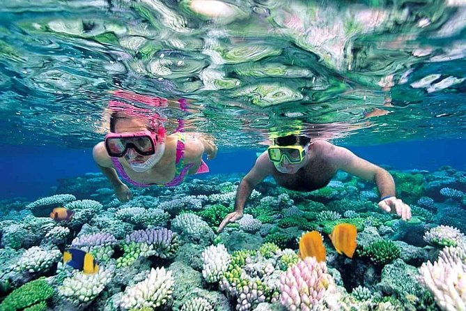 Snorkeling and fishing tour in the north of Phu Quoc Island photo 1