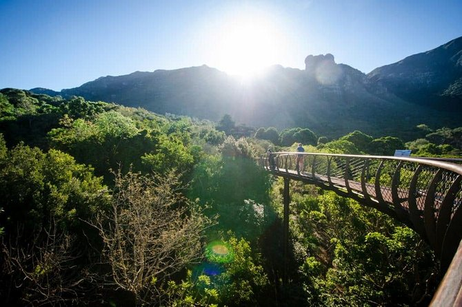 Wine Farms in Constantia and World Famous Kirstenbosch Gardens