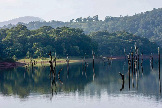 Guided Jeep Safari Tour of Gavi from Thekkady with Breakfast photo 2