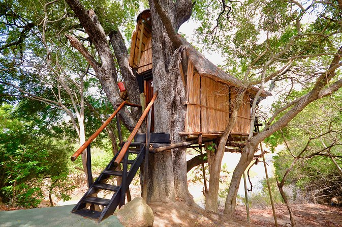 4 Day Lodge and Treehouse Kruger National Park Safari
