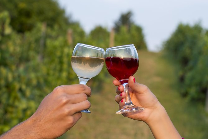 Private Wine Tour - Visit Two Small Wineries