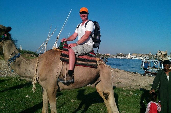 Camel Ride Tour In Luxor