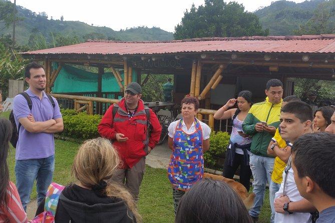 Serranía del Nudo, Nature and Coffee Tour