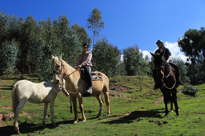 Horse Riding 4 Incas Archaeological Centers Full Service