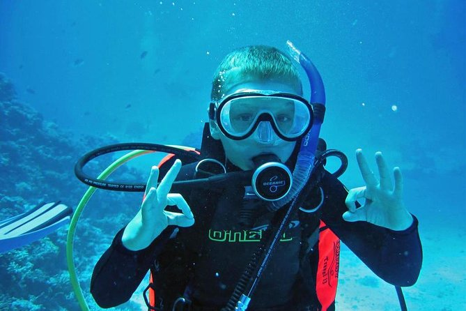 Private Full-Day Snorkeling Tour to Utopia Island from Luxor