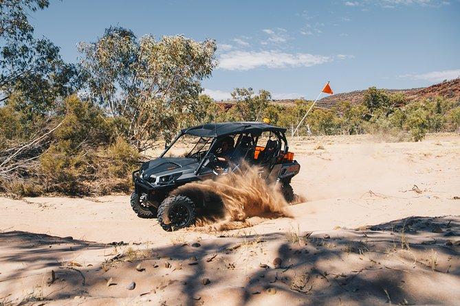 Half Day Outback Roam