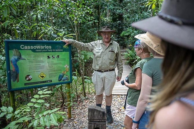 2 Day Daintree Cape Tribulation Bloomfield track and Chillagoe Caves & Outback