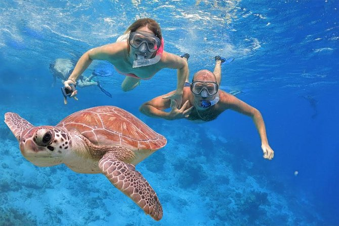Bali Blue Lagoon Full-Day Snorkeling Experience plus Lunch