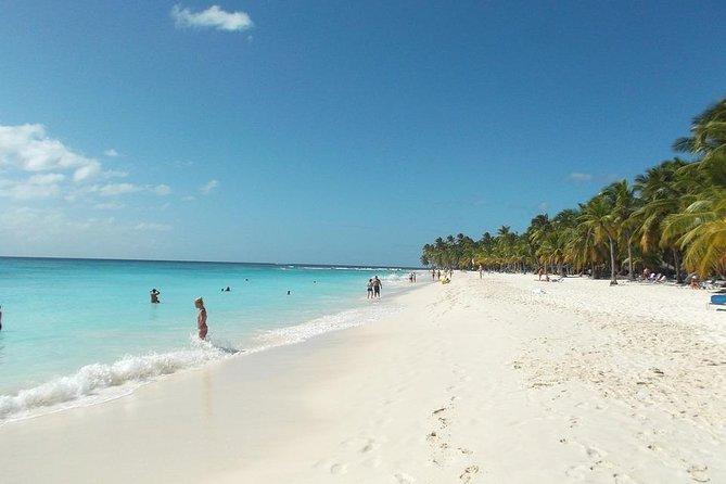 Saona: un paraíso en el caribe. Ven y disfruta de esta bella isla y sus playas.
