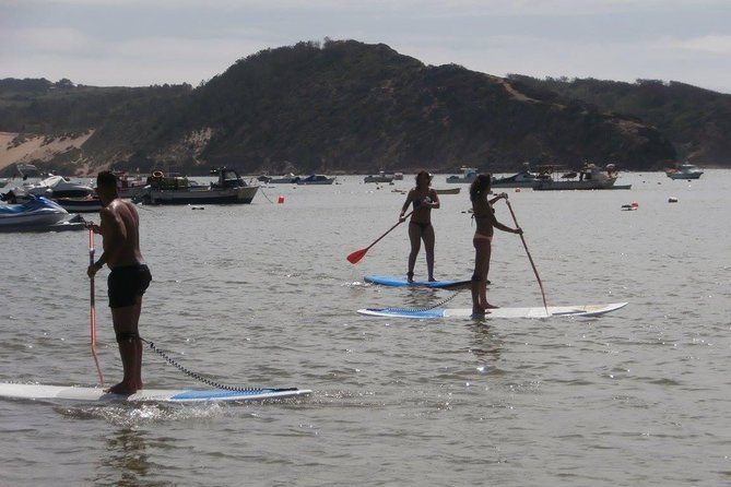 Rental of boards and stand up paddle lessons