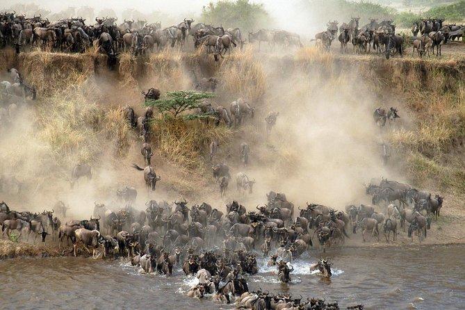7 days / 6 nights Mid Range Safari