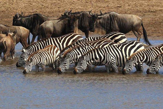 6 days / 5 nights Mid Range Safari