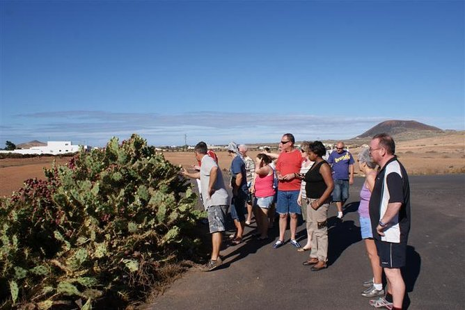 Jeep Safari: Northern Lanzarote tour photo 8