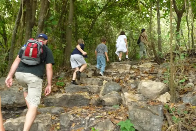 Birdwatching in Cerro Blanco from Guayaquil