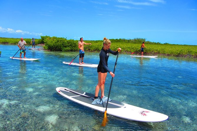 SUP Paddleboard Lesson and Tour - Port Canaveral & Cocoa Beach