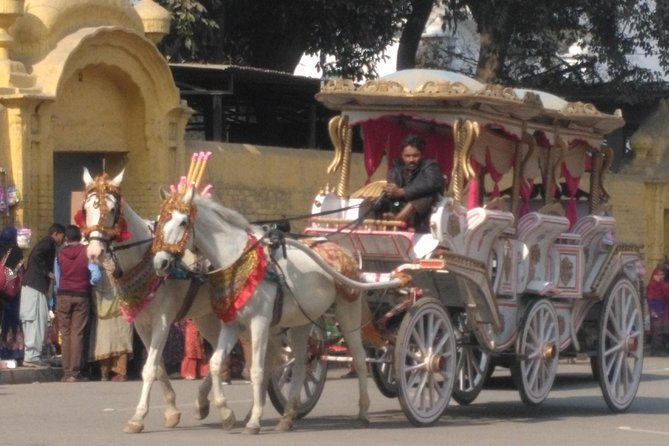 We also arrange a Horse carriage tour around Minaret of Pakistan in Greater Iqbal Park.