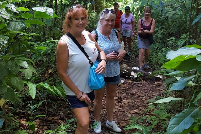 St Kitts Half-Day Rainforest Tour (Reconfirm 48hrs)