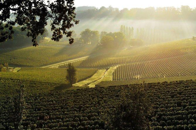 Saint Emilion: Wine tasting in a castle