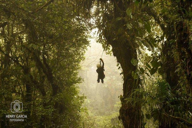 Monteverde Cloud Forest day trip from Samara Beach