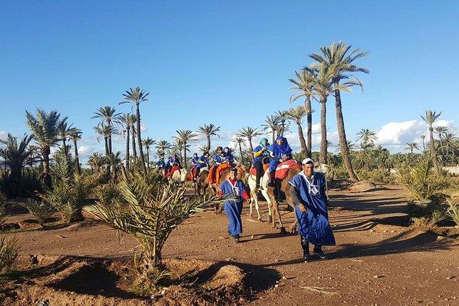 Marrakech Camel Trek